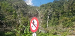 No walking on track with man with hat.