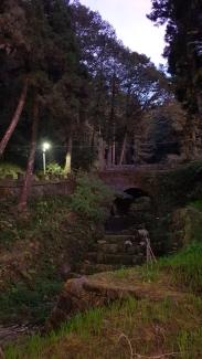 Arch bridge in nature.