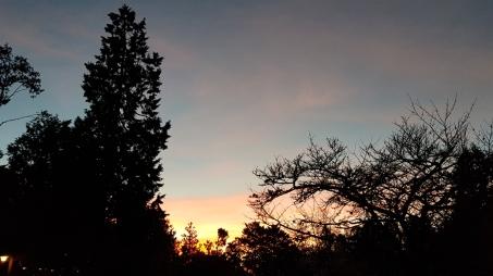 Last bit of orange sky.
