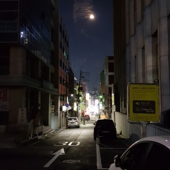 Side alley. Seoul, Korea.