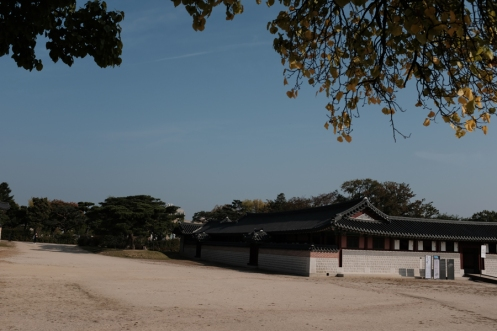 Lazy afternoon in Gyeongbokgung Palace. Seoul, Korea.